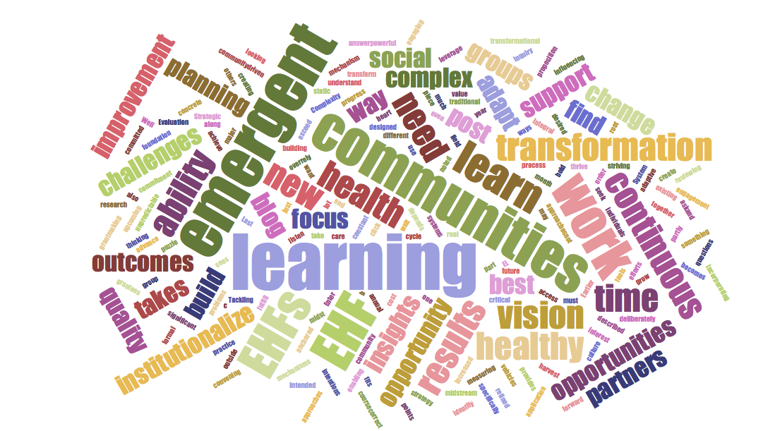 Emergent Learning word cloud.png