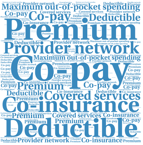 Health insurance terms blog word art.png